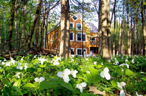Harbor Springs Ski Lodging Vacation Rental MI
